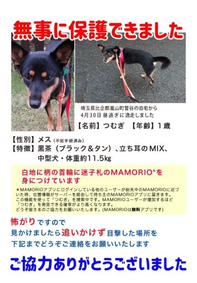 1web_tsumugi_mamorio