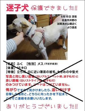 Web_fuku_2