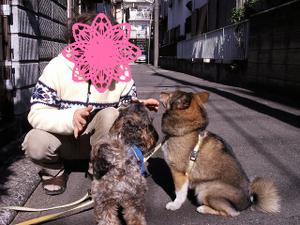 Photo_027_1