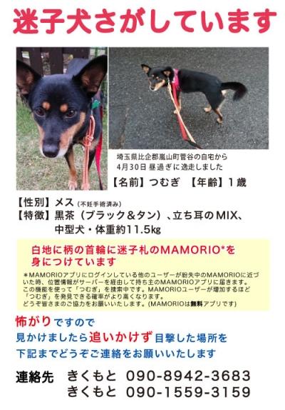 Web_tsumugi_mamorio_1